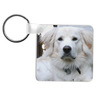 Personalized Photo Key Chain FRP Square- 2.25x2.25 Plastic Key Chain Double Sided