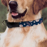 "Custom Pet Collar - Large - 16"" - 26"""