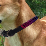 "Custom Pet Collar - Medium 16"" - 20"""