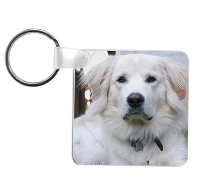 5524-keychain-dog-1