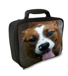 Personalized Lunch Box - 9x3x7 Insulated Lunch Tote